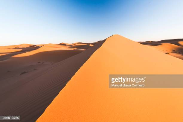 desert dunes - merzouga stock pictures, royalty-free photos & images