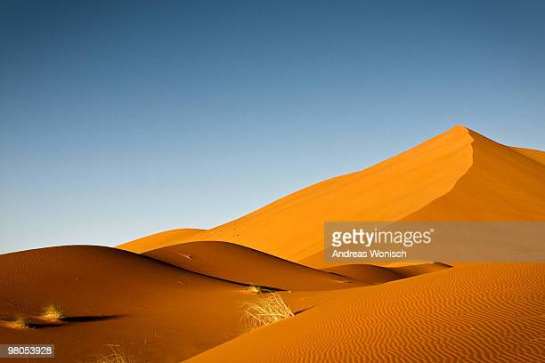 Desert Dunes with Lonely Person