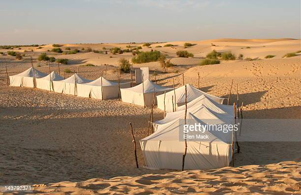 desert encampment - mali photos et images de collection