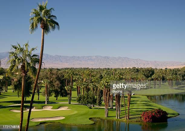 Desert Golf Series 5