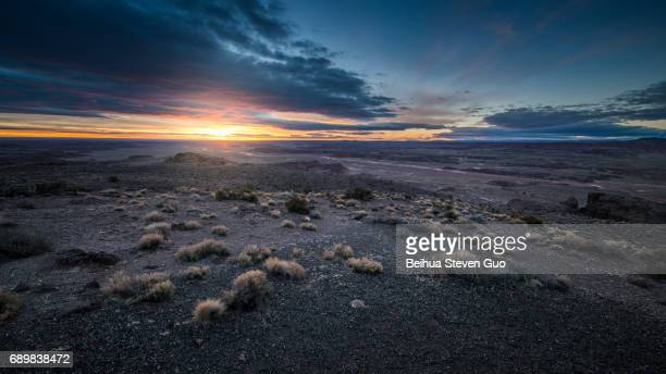 Desert Hills During Sunset with Plants in the Foreground in Pintado Point, Petrified Forest National Park, Arizona