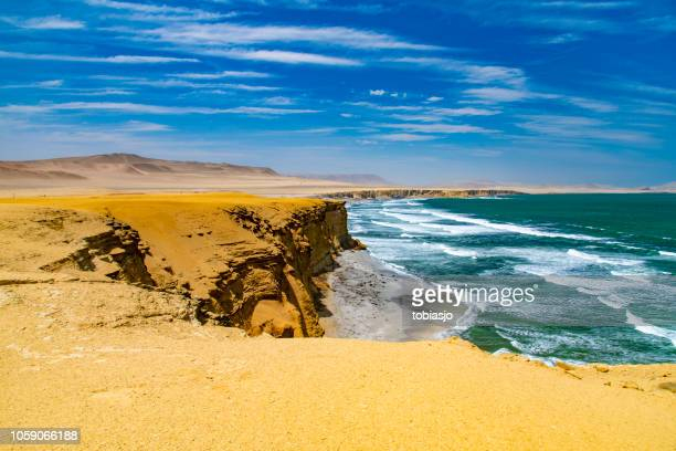 desert in peru - lima animal stock pictures, royalty-free photos & images