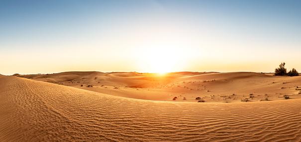 Desert in the United Arab Emirates at sunset 1133009965