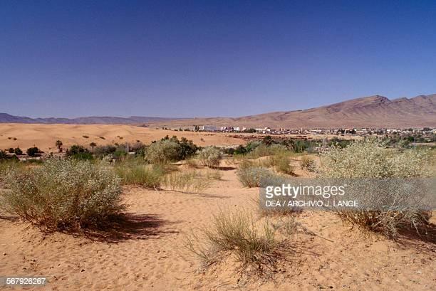 Desert landscape, Ain Sefra, Sahara Desert, Algeria.