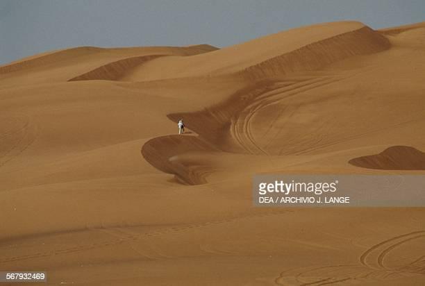 Desert landscape Arabian Desert Dubai United Arab Emirates