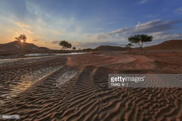 Desert landscape at sunset, Riyadh, Saudi Arabia