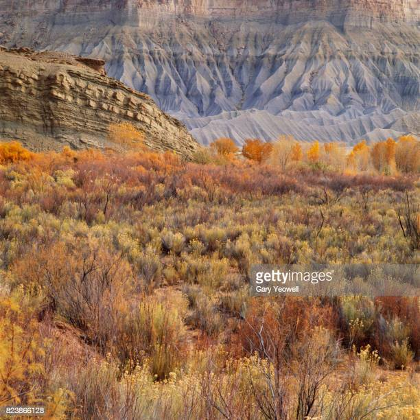 desert landscape in capitol reef national park, usa - yeowell stock pictures, royalty-free photos & images
