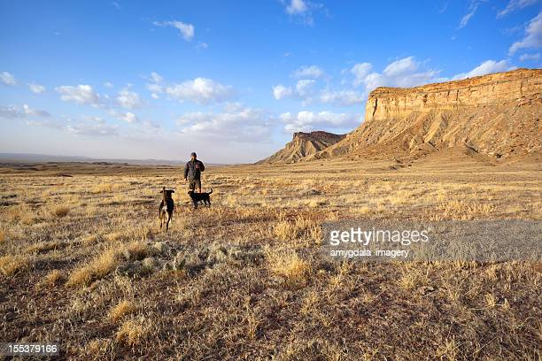 desert landscape man and dogs sunrise
