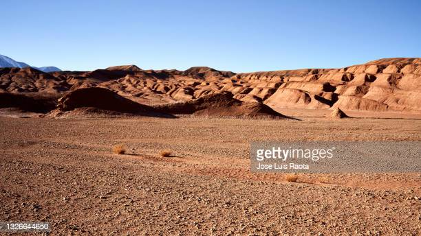 desert landscape, northern argentina - north stock pictures, royalty-free photos & images