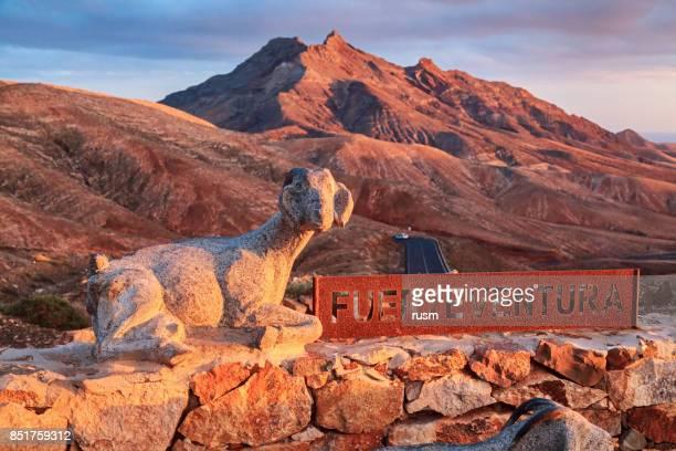 Woestijn landschap van Fuerteventura, Canarische eilanden, Spanje met eiland symbolen