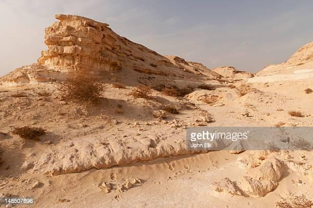 desert landscape. - bahrain stock-fotos und bilder