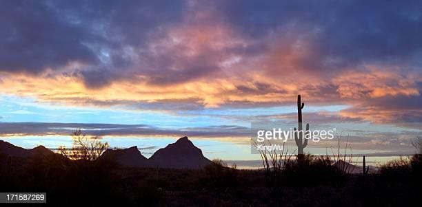 Desert-Landschaft