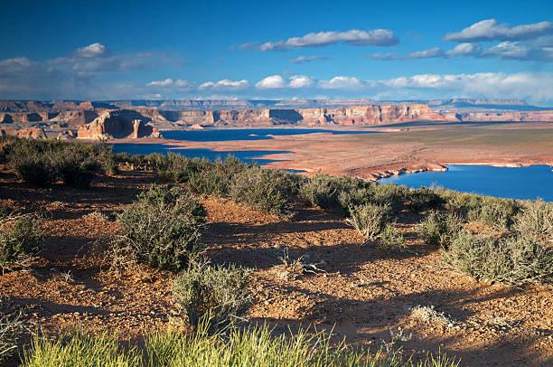 Desert Landscape Wall Art