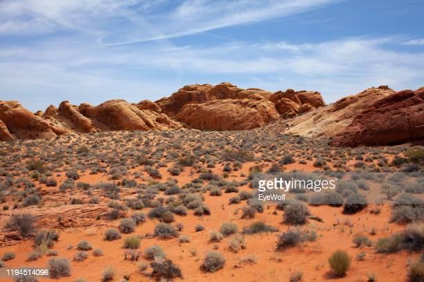 desert landscape with red rocks and blue skies at the valley of fire, nevada - rocha vermelha imagens e fotografias de stock