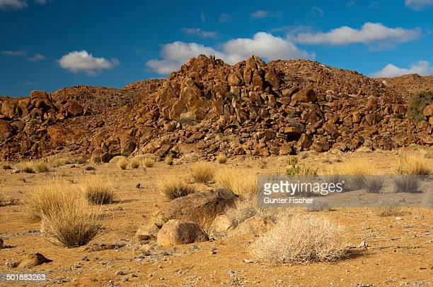 desert landscape with the heavily eroded granitberg mountain in richtersveld transfrontier national park, namaqualand, northern cape, south africa - ナマクワランド ストックフォトと画像