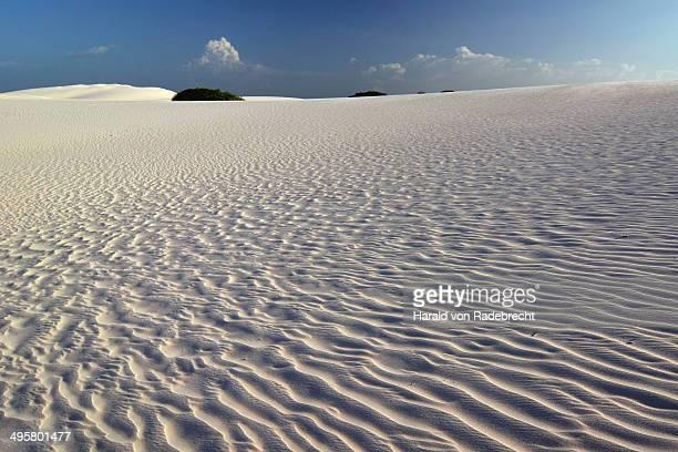 desert, lencois maranhenses, lencois maranhenses, barreirinhas, maranhao, brazil - barreirinhas stock pictures, royalty-free photos & images