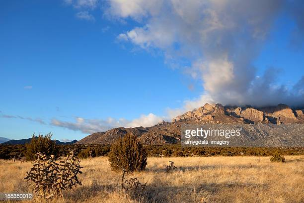 desert mountain landscape sunset - western juniper tree stock pictures, royalty-free photos & images