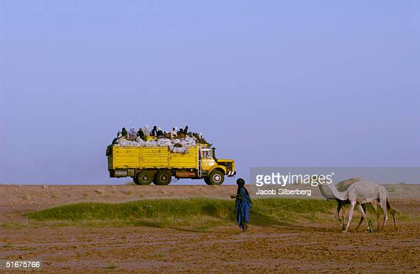A desert nomad leads two of his camels and watches african migrants travel in the back of a truck across the Sahara Desert on September 26 2004 near...