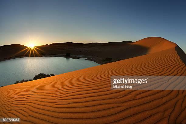 Desert Oasis and the Red Sand Dunes of Sossusvlei, Namib-Naukluft National Park, Namibia, Africa