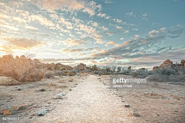 Desert path at sunset