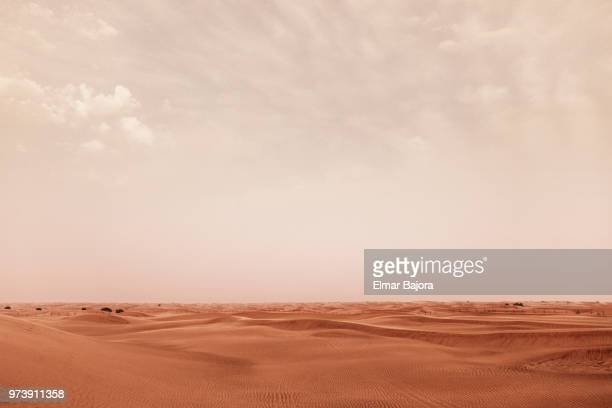desert - desert stock pictures, royalty-free photos & images