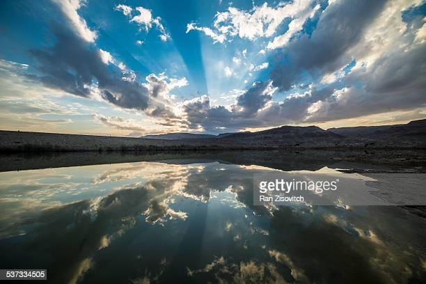 Desert reflection