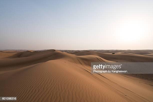 Desert safari on Dubai, UAE