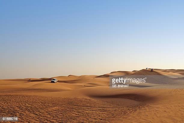 desert safari - safari stock pictures, royalty-free photos & images