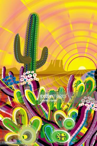 desert, saguaro cactus, mountains landscape illustration in warm sunset sunrise colors - sonoran desert stock pictures, royalty-free photos & images