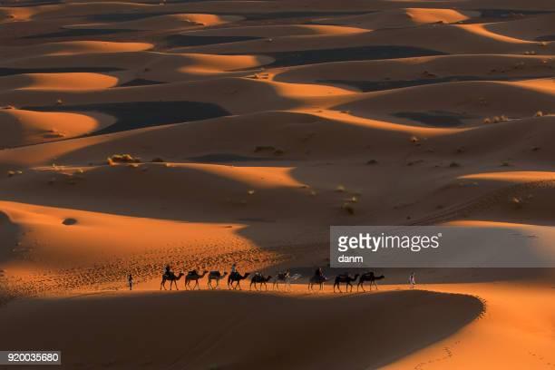 Desert Sahara, Camel Ride Caravan, Enjoying and happy People