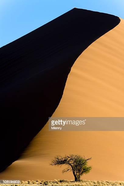 Desert Sand Dune 45 Nambia Sossusvlei