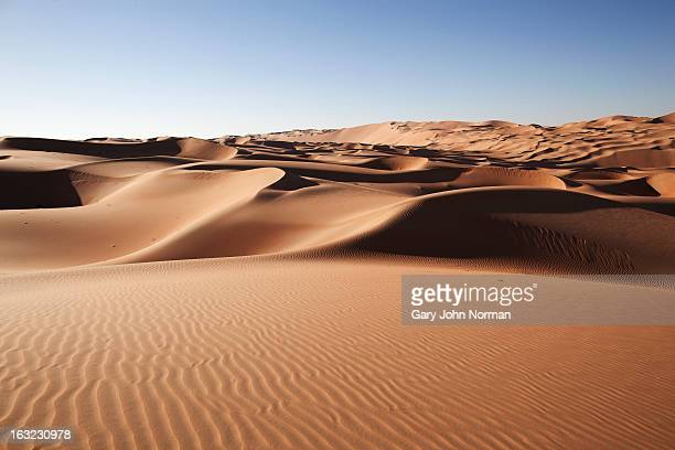 desert sand dunes at liwa oasis uae - desert stock pictures, royalty-free photos & images