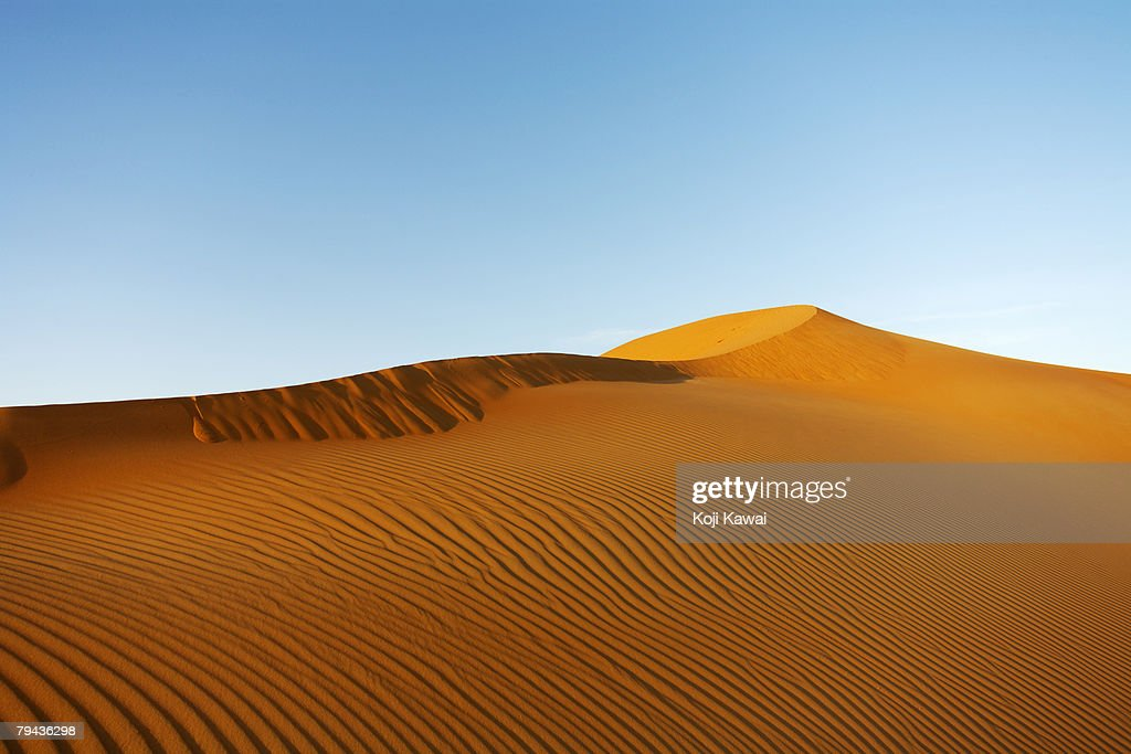 Desert sand dunes in Abu Dhabi. United Arab Emirates : Stock Photo