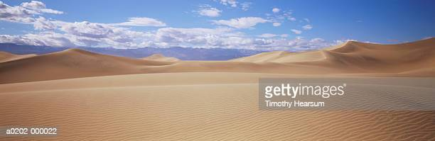 desert sand dunes - timothy hearsum stock pictures, royalty-free photos & images