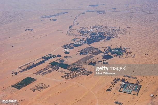 Desert settlement near Dubai from the air.