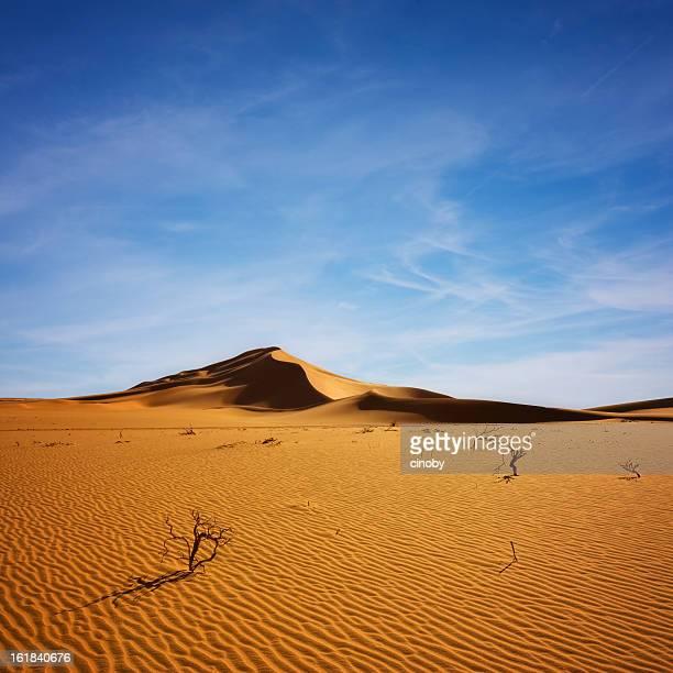 desert sky - libye photos et images de collection
