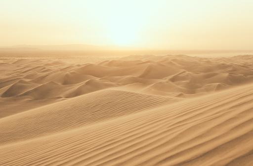 Desert Sun 515447460