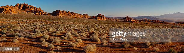 desert sunrise at the valley of fire - sagebrush stock pictures, royalty-free photos & images
