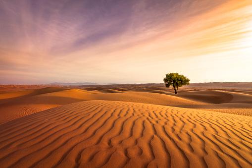 desert sunset 658653498