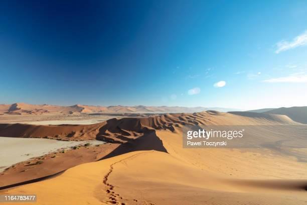 desert trail to big daddy dune in sossusvlei, namibia, 2018 - kalahari desert fotografías e imágenes de stock