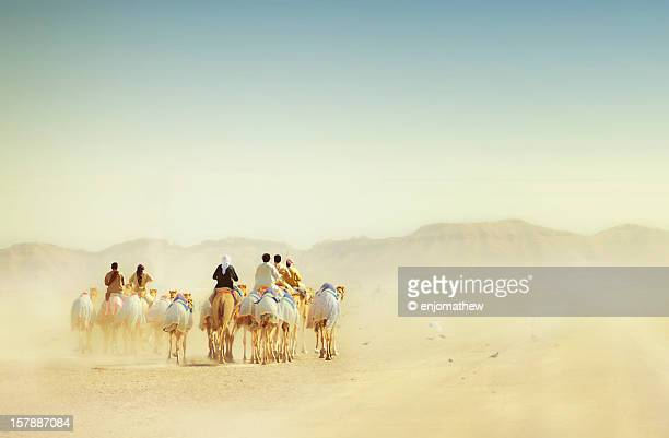 desert travellers - abu dhabi stock pictures, royalty-free photos & images