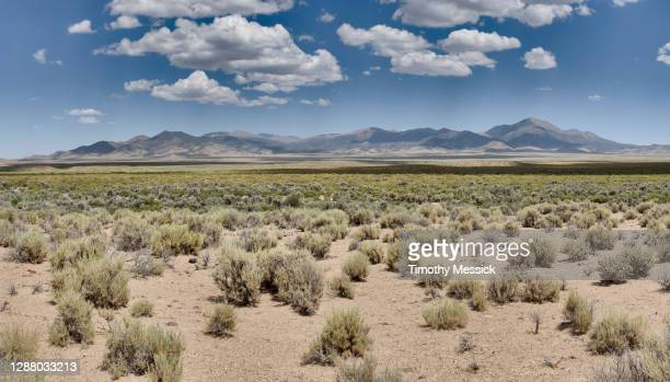 desert valley and mountains - nevada stock pictures, royalty-free photos & images