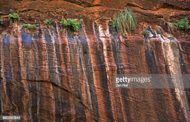 desert varnish also called rock varnish on canyon wall in zion national park - sandstone stock pictures, royalty-free photos & images