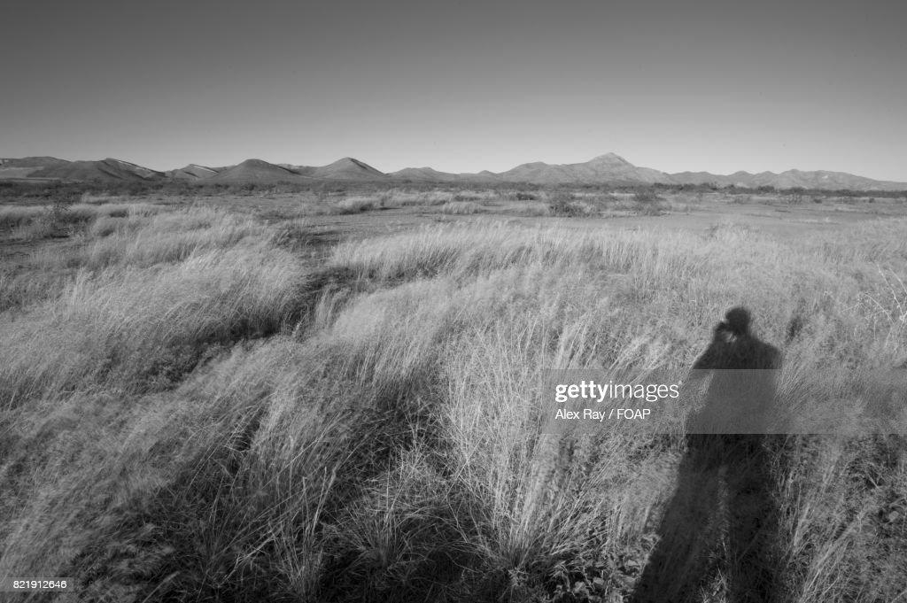Desert view in Arizona : Stock Photo