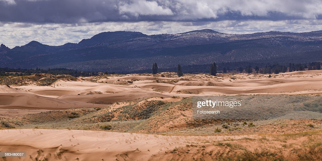 Desert with mountain range in the background : Stock Photo