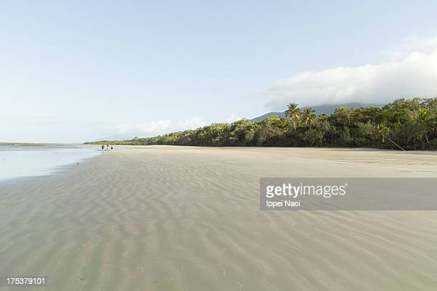 Deserted beach and tropical rainforest, Queensland