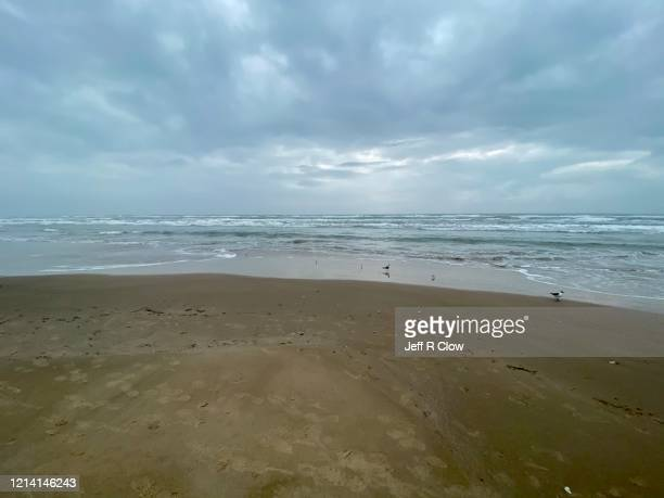 deserted beach on south padre island during spring break - south padre island stock pictures, royalty-free photos & images