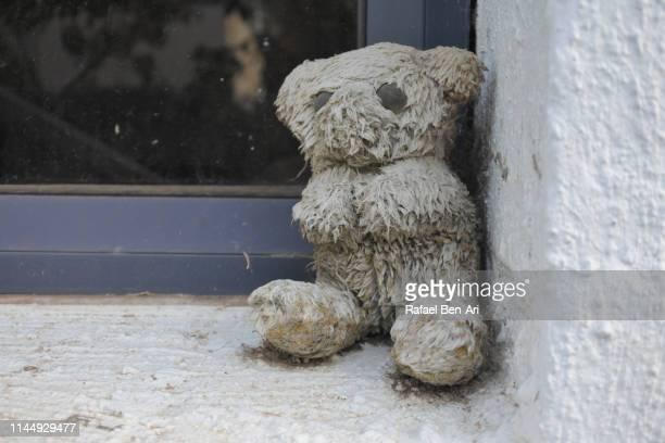 Deserted dirty teddy bear