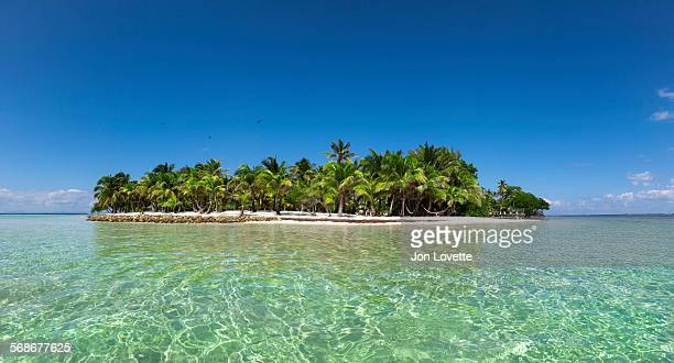 deserted island panorama - belize stock pictures, royalty-free photos & images
