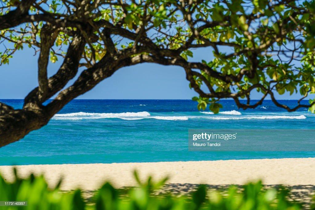 A deserted tropical beach at Nusa Dua : Foto stock